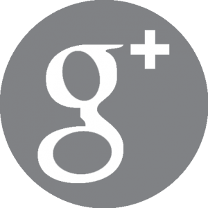 Google Plus Gris