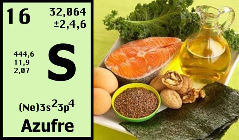 El sol y la alimentaci 211 n iv azufre omega 3 y agua farmacia sof 237 a